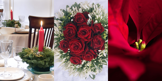 Christmas Theme for a Renewal of Vows Celebration