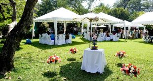Planning a Summer Vow Renewal