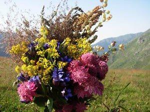 Medieval Theme Flowers