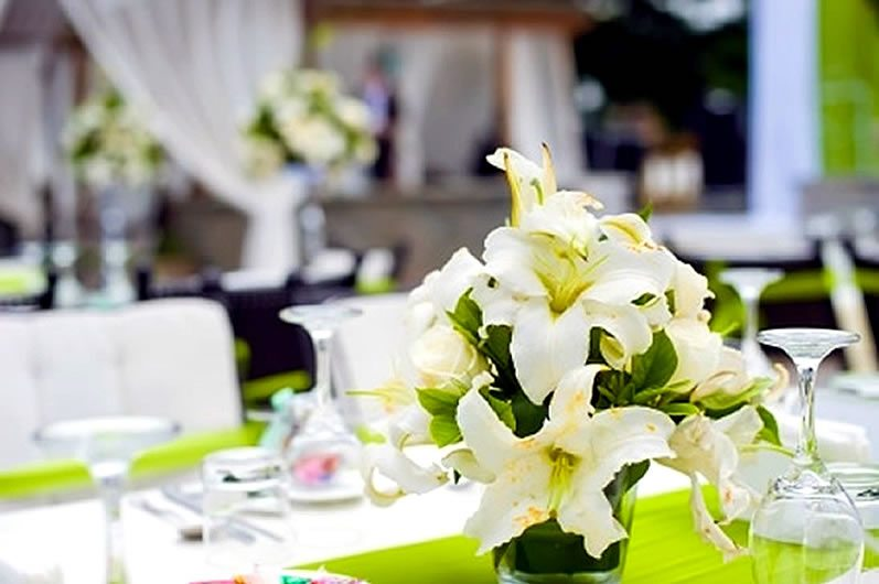 Green and white lily centerpiece