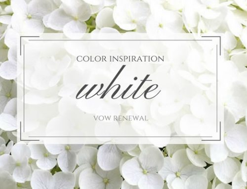 Classic White Vow Renewal Theme
